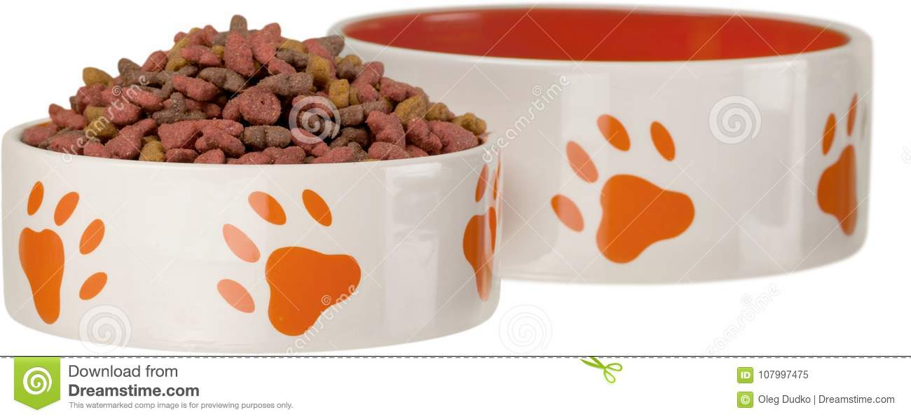 Dry dog treats in bowl isolated on whit
