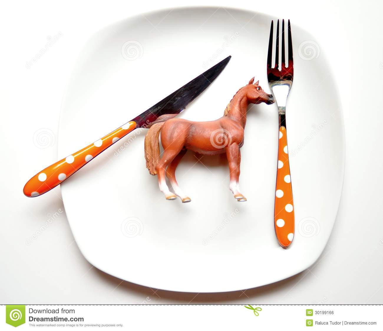 Euro Kitchen Design The Problem With Eating Horse Meat Royalty Free Stock