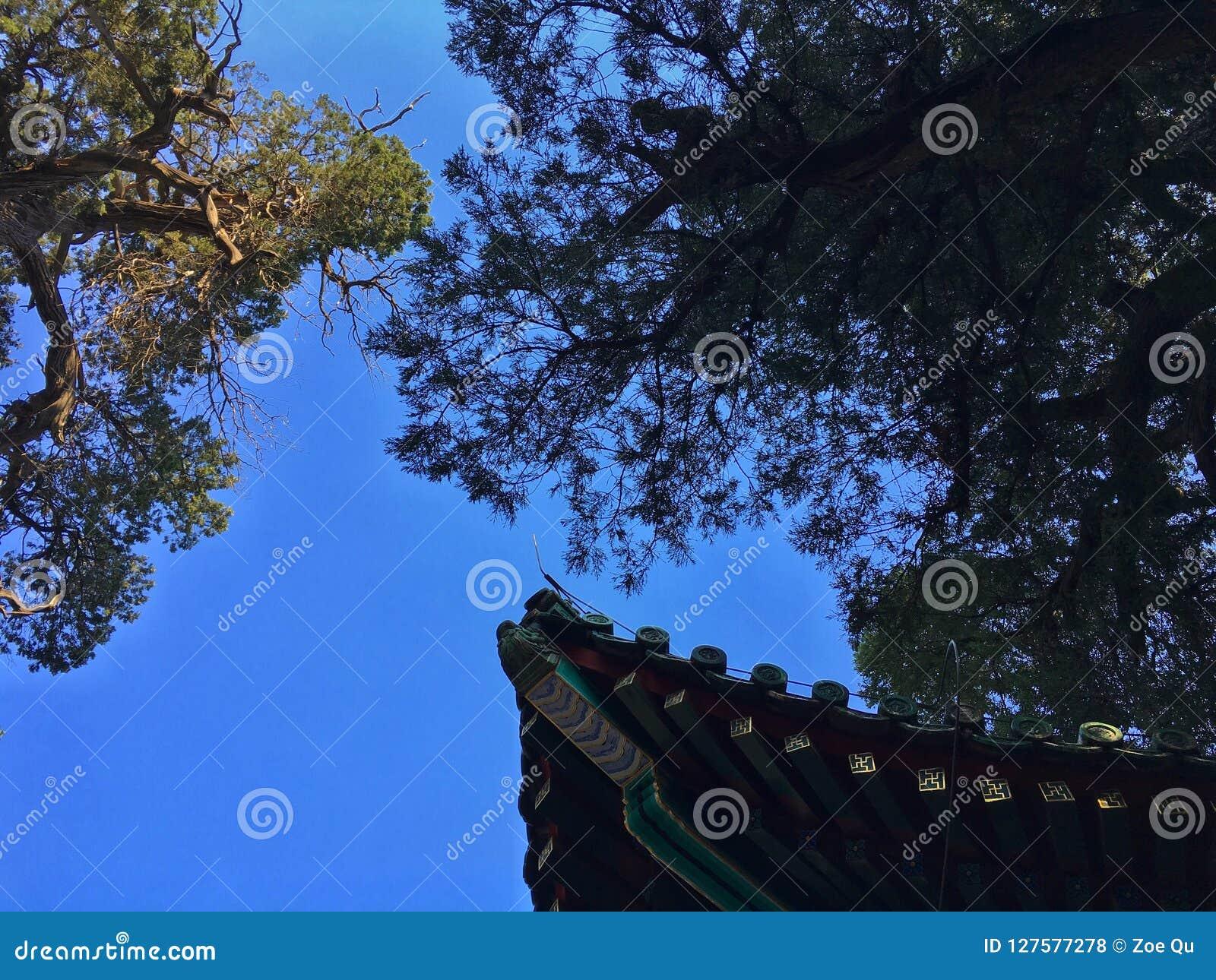 Eaven av kinesisk traditionell byggnad, Peking