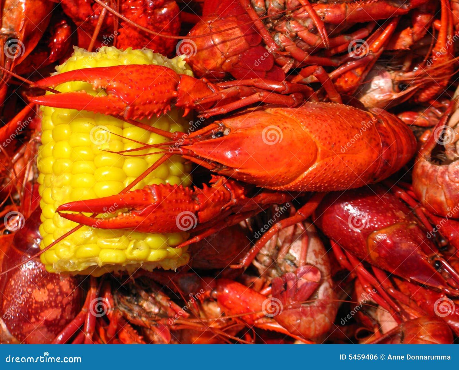 Ebullición de los cangrejos