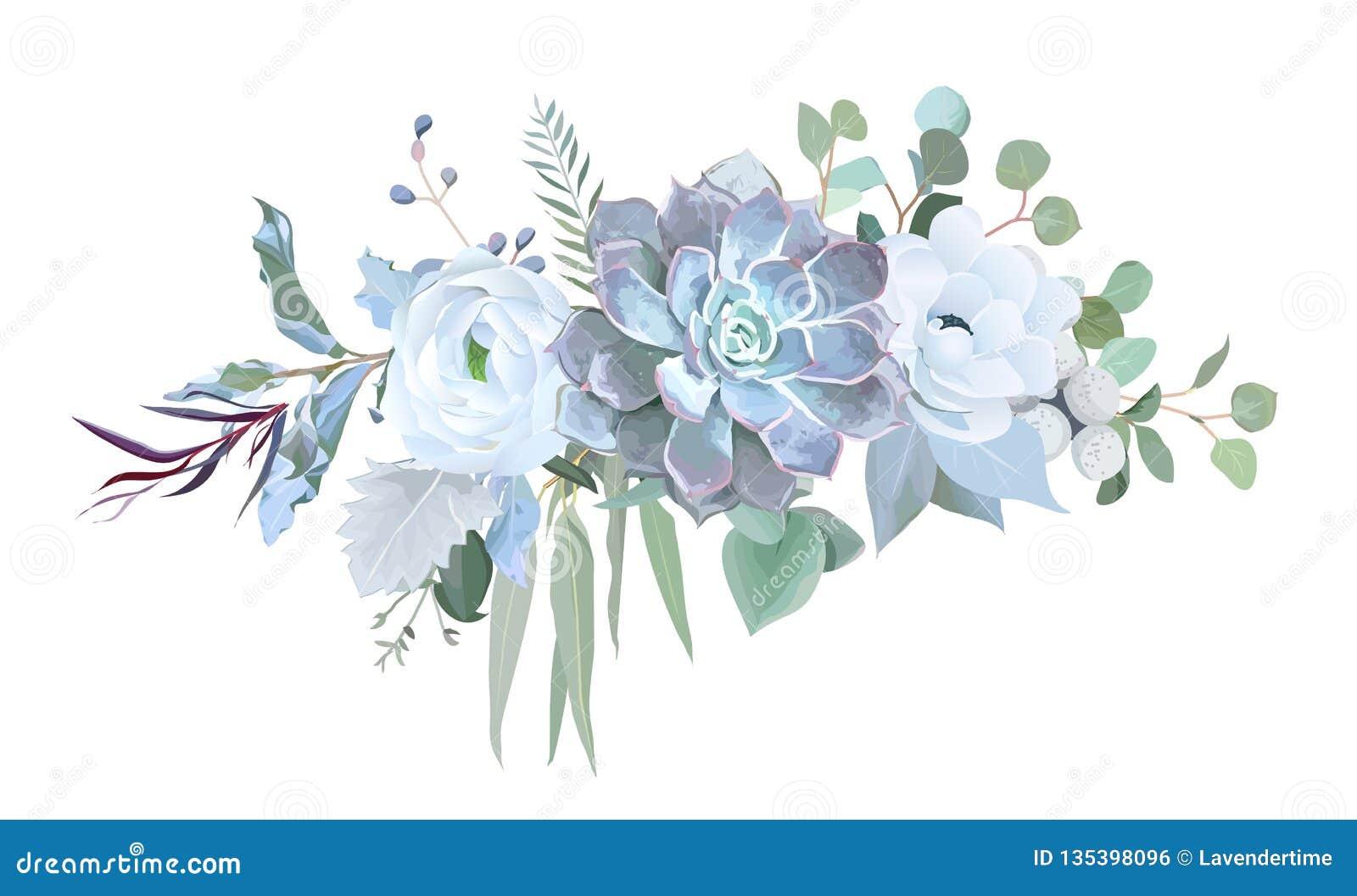 Echeveria azul polvoriento suculento, ranúnculo blanco, anémona, eucal