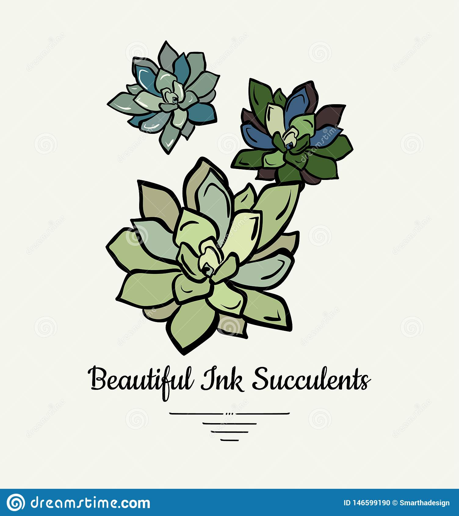 Echeveria hand drawn succulent vector isolated illustration. Modern ink succulent plant logo, icon, poster, banner, postcard.