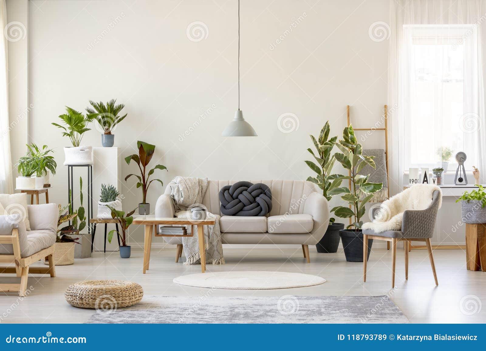 Echte foto van een botanisch woonkamer binnenlands hoogtepunt van installaties met