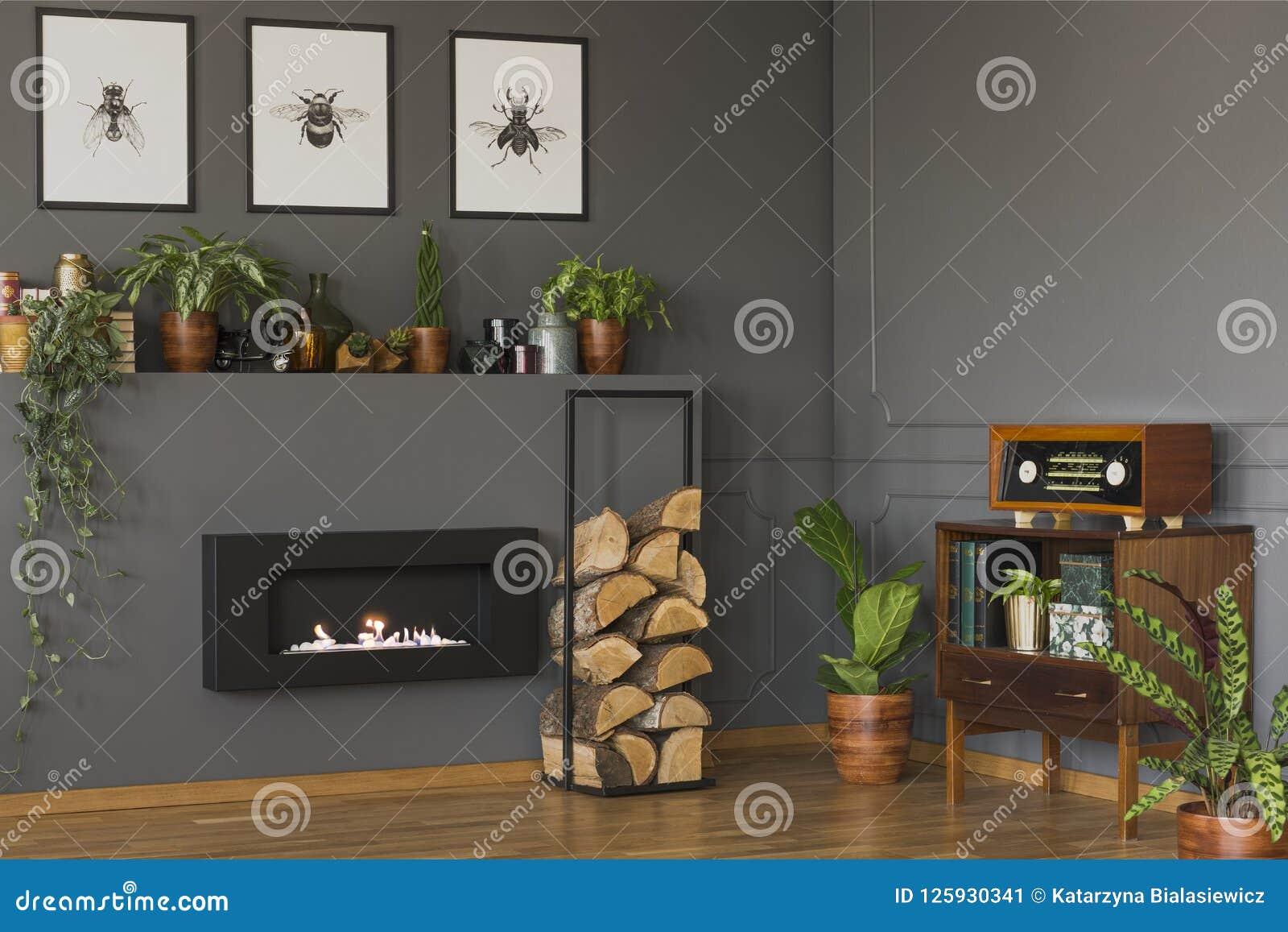 Echte foto van een uitstekend woonkamerbinnenland met een plank met p