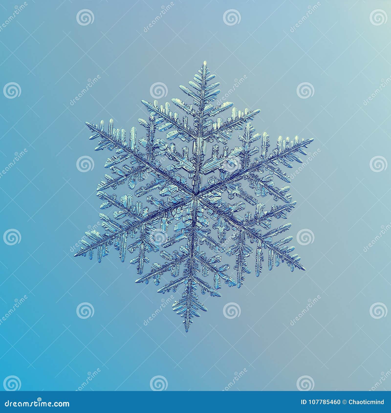 Echte sneeuwvlok die op vlotte gradiëntachtergrond schitteren