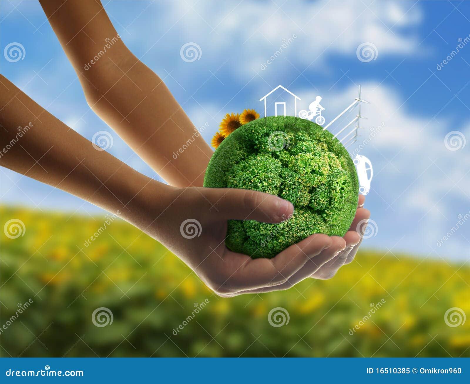 Eco έννοιας