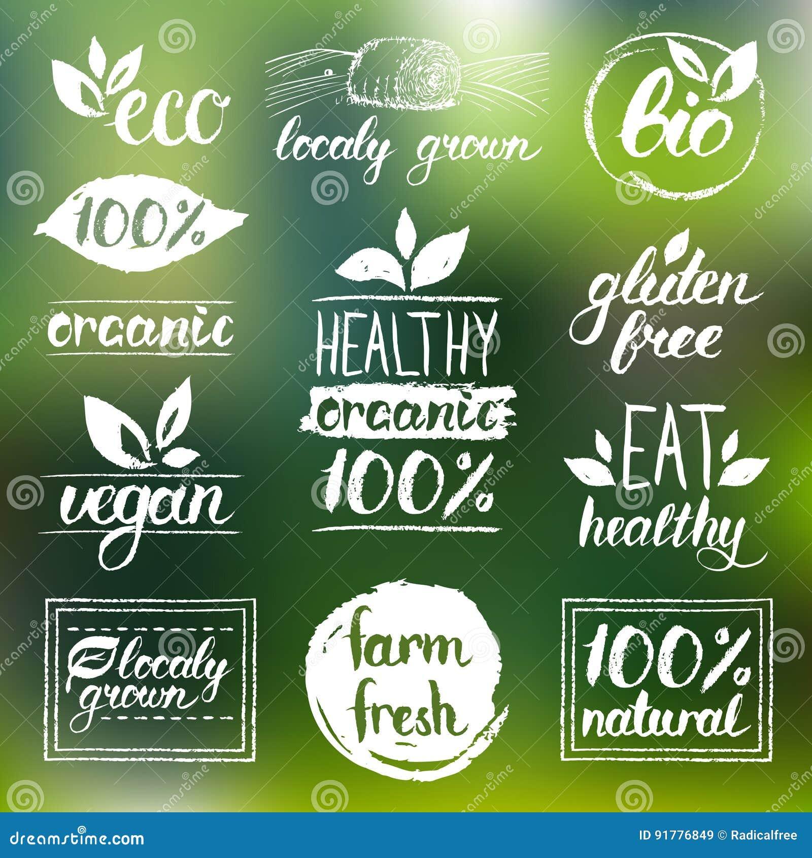 Eco вектора, органические, био логотипы Vegan, естественная еда и знаки питья Рынок фермы, собрание значков магазина Сырцовые ярл