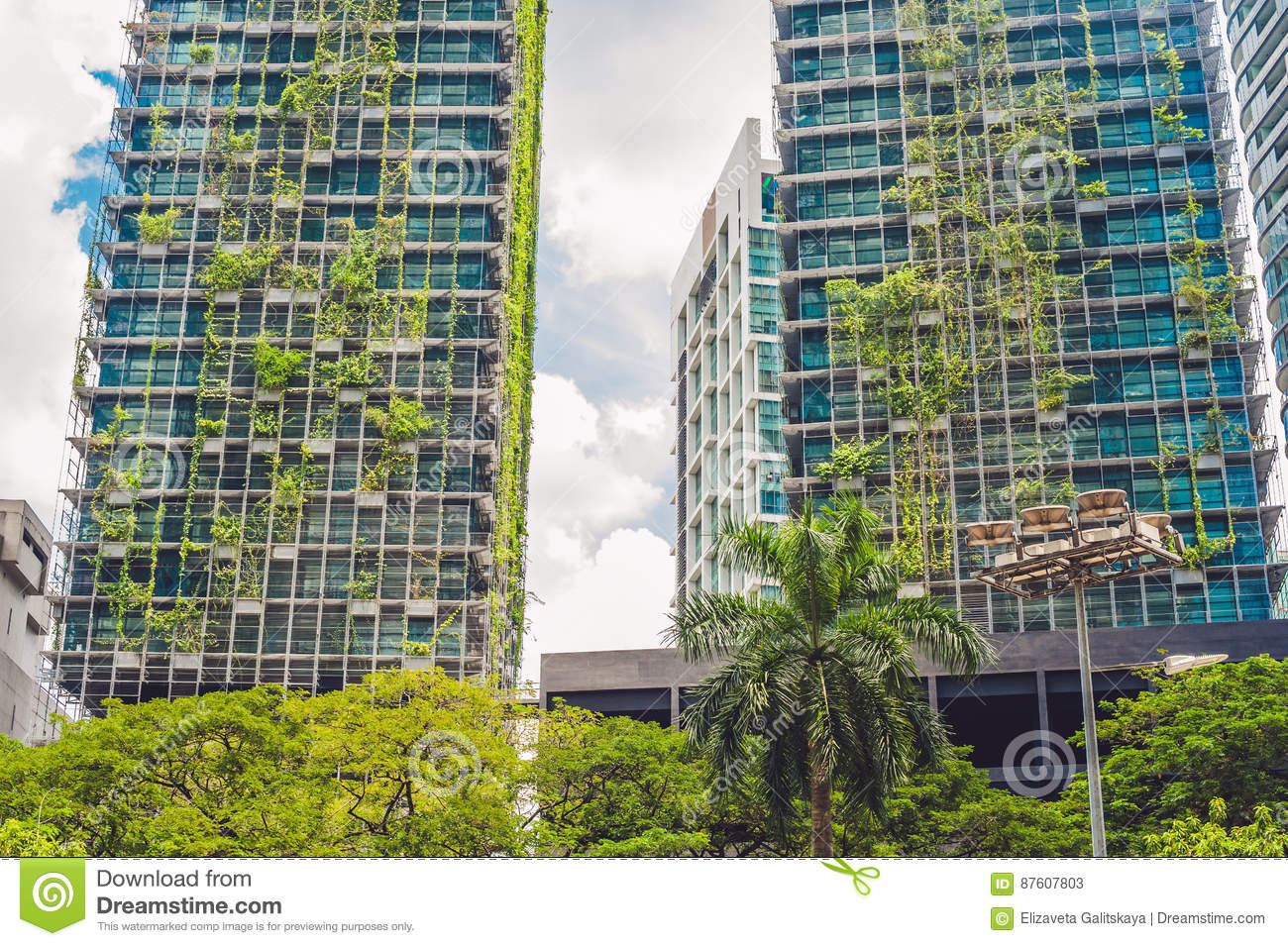green architecture and the environment Evst 255: environmental politics and law lecture 21 - certification: design and green architecture overview new construction and renovation certification chemical contents and indoor environmental quality certification and its limits on health and the environment.
