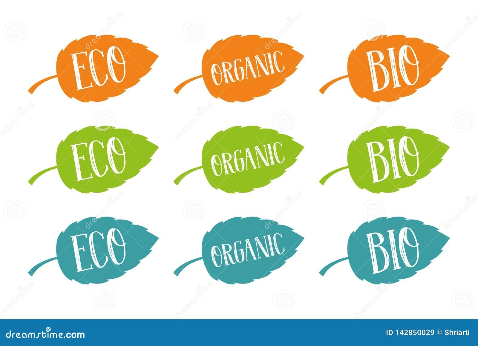 Eco-, Bio- und organischervektor eingestellt für Netz und Druck Handgezogene Typografie auf bunten Blättern