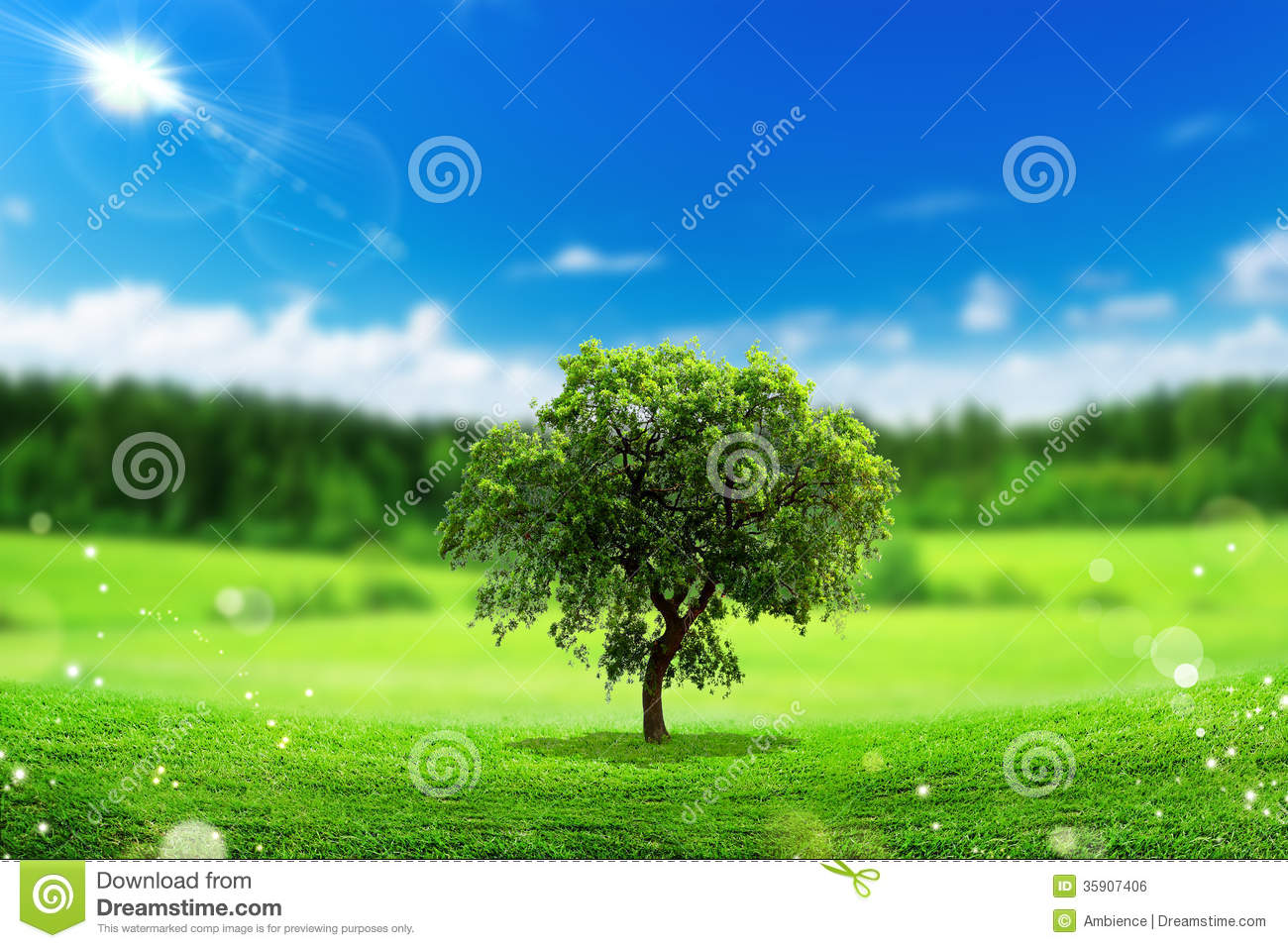 28 Environmental Concept Earth Friendly Landscapes  : eco concept beautiful tree landscape clear 35907406 from hdialysis.com size 1300 x 957 jpeg 202kB