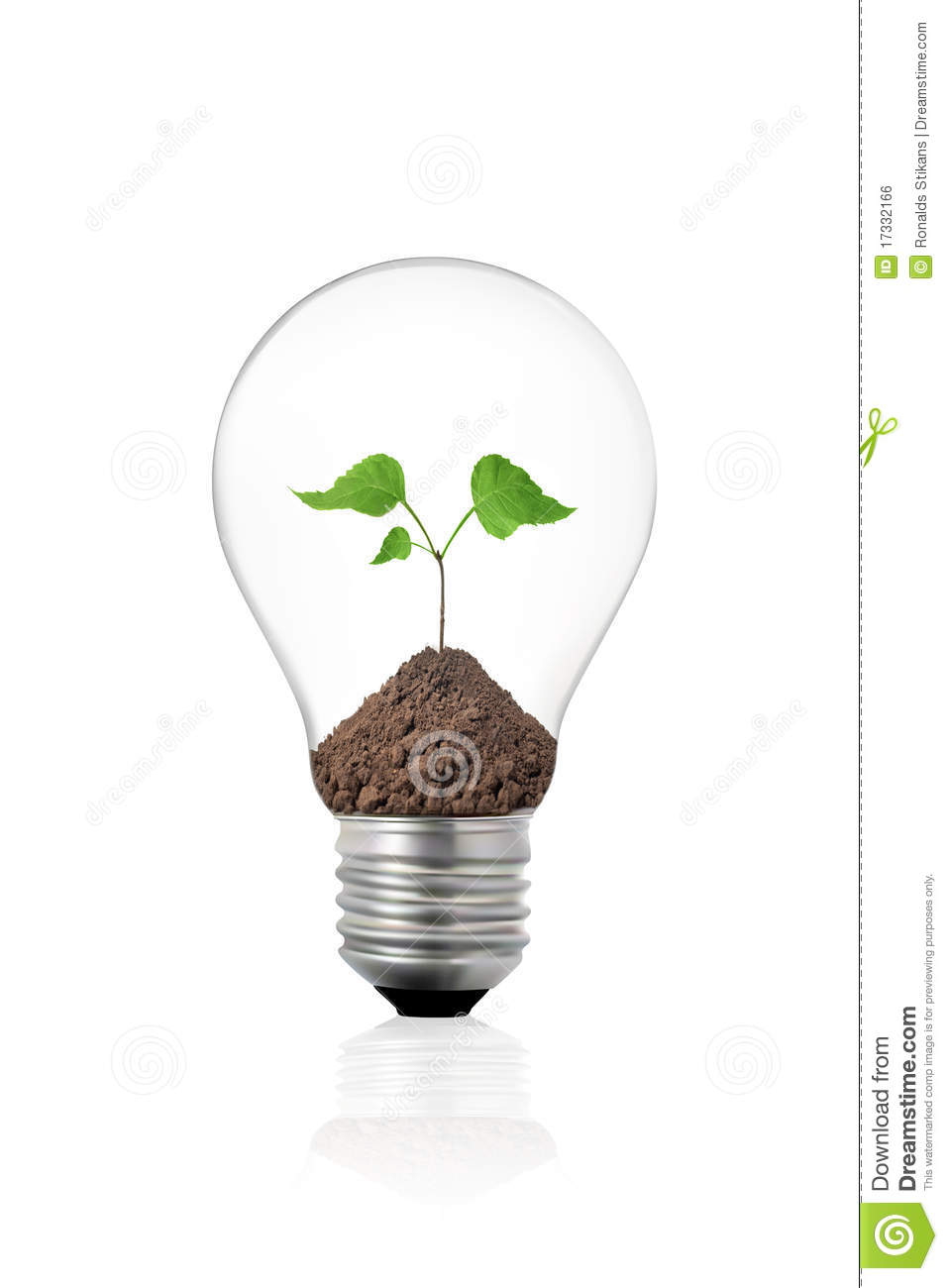 eco concept light bulb with green plant inside royalty free stock image image 17332166. Black Bedroom Furniture Sets. Home Design Ideas