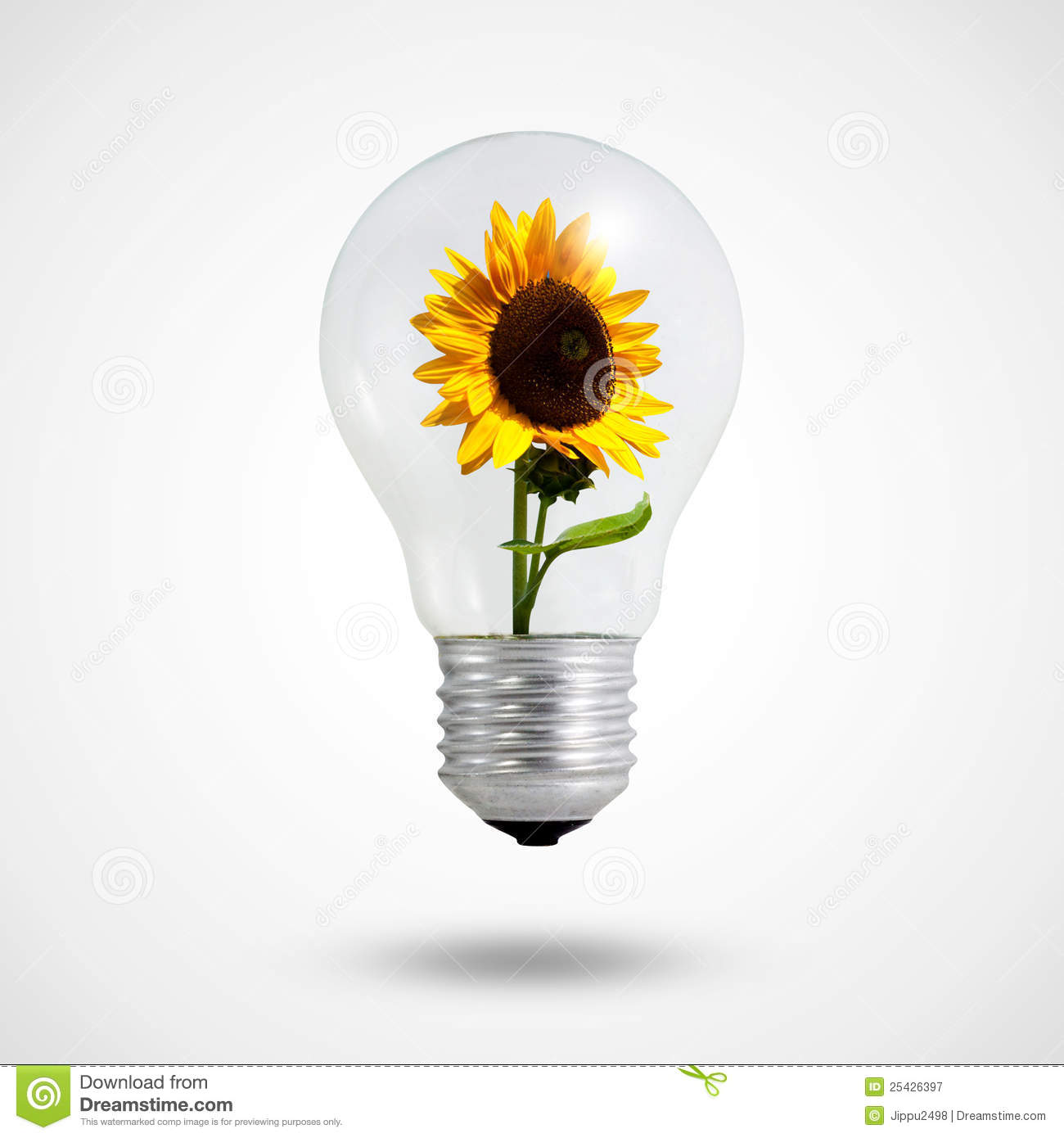 Eco concept: light bulbs with Sunflower inside
