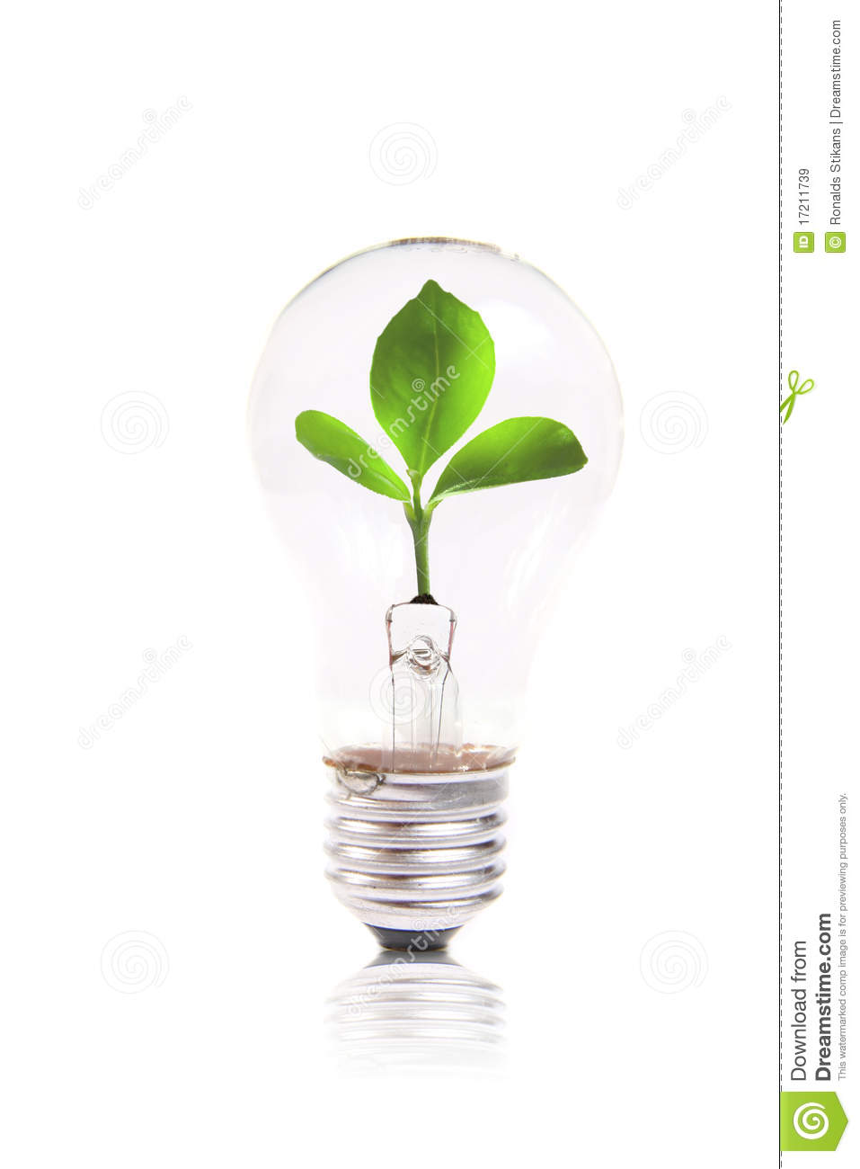 eco concept lightbulb with green plant inside royalty free stock images image 17211739. Black Bedroom Furniture Sets. Home Design Ideas