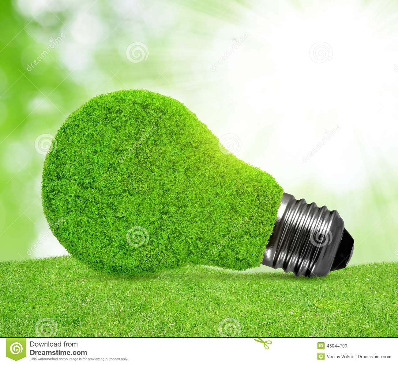 eco energy bulb in grass stock photo image 46044709. Black Bedroom Furniture Sets. Home Design Ideas