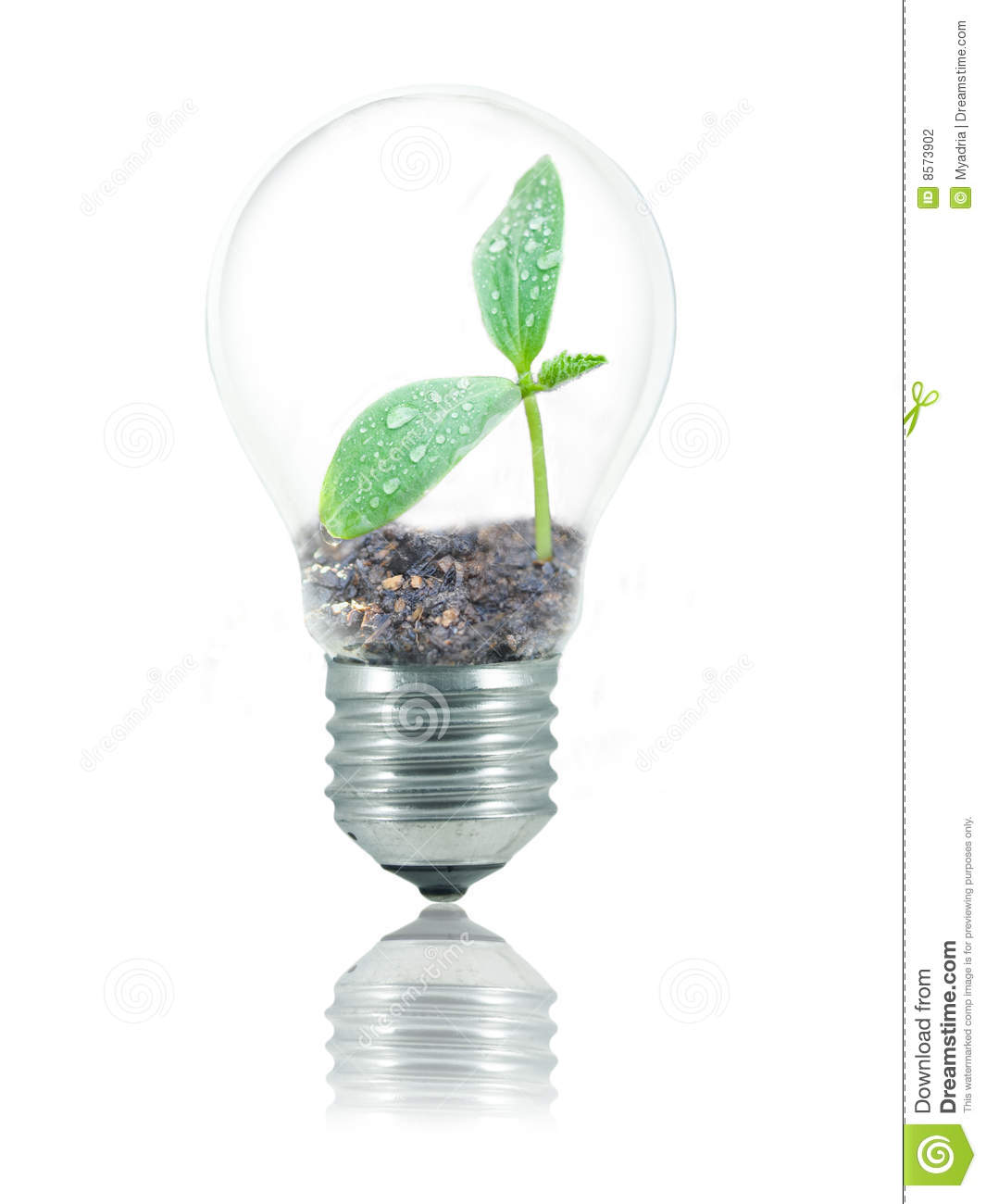 Eco Friendly Bulb Stock Photography Image 8573902