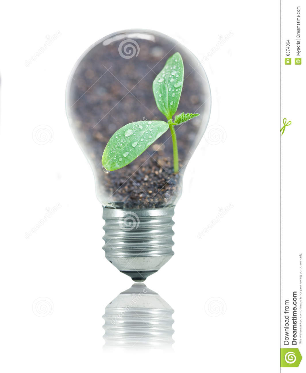 Eco Friendly Bulb Stock Images Image 8574064