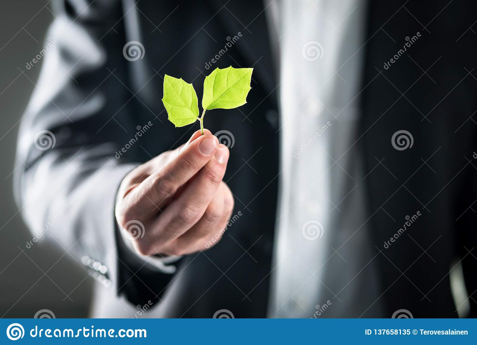 Eco friendly environmental lawyer or business man. Sustainable development, climate change, ecology and carbon footprint concept.