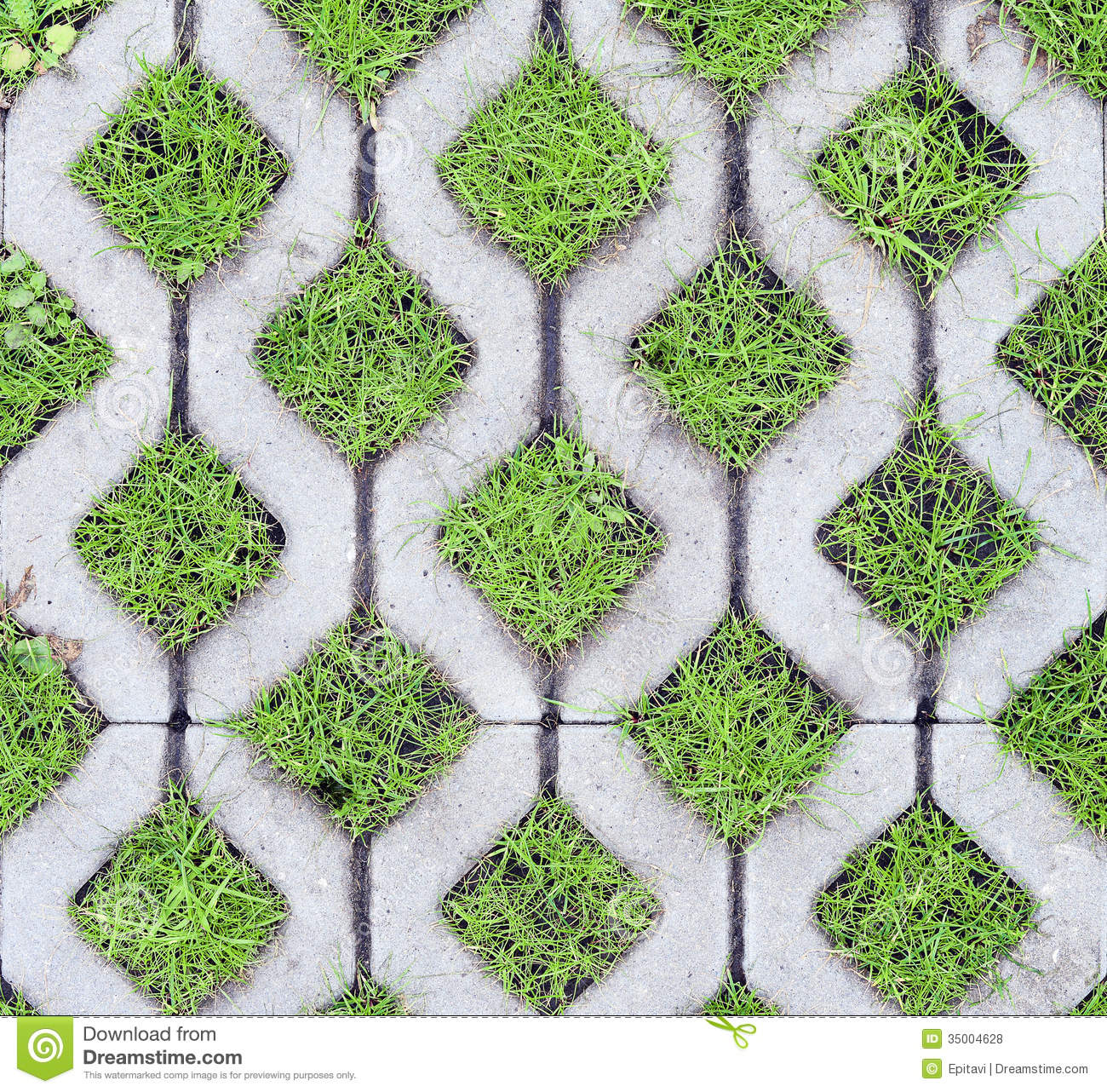 Eco-friendly parking stock photo  Image of green, pavers