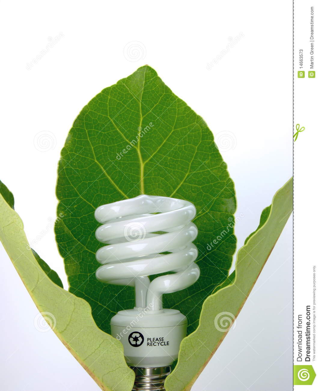 Eco Light Bulb Stock Photos Image 14663573