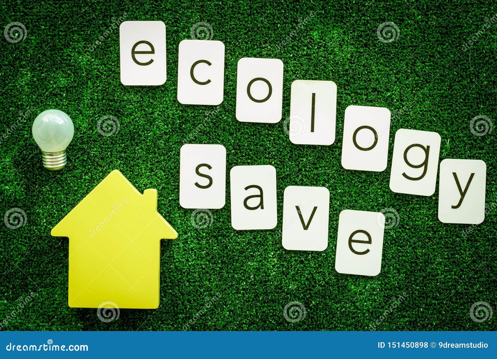 Ecologia salvo o texto e a casa com o bulbo para o conceito amigável do eco na opinião superior do fundo verde da textura