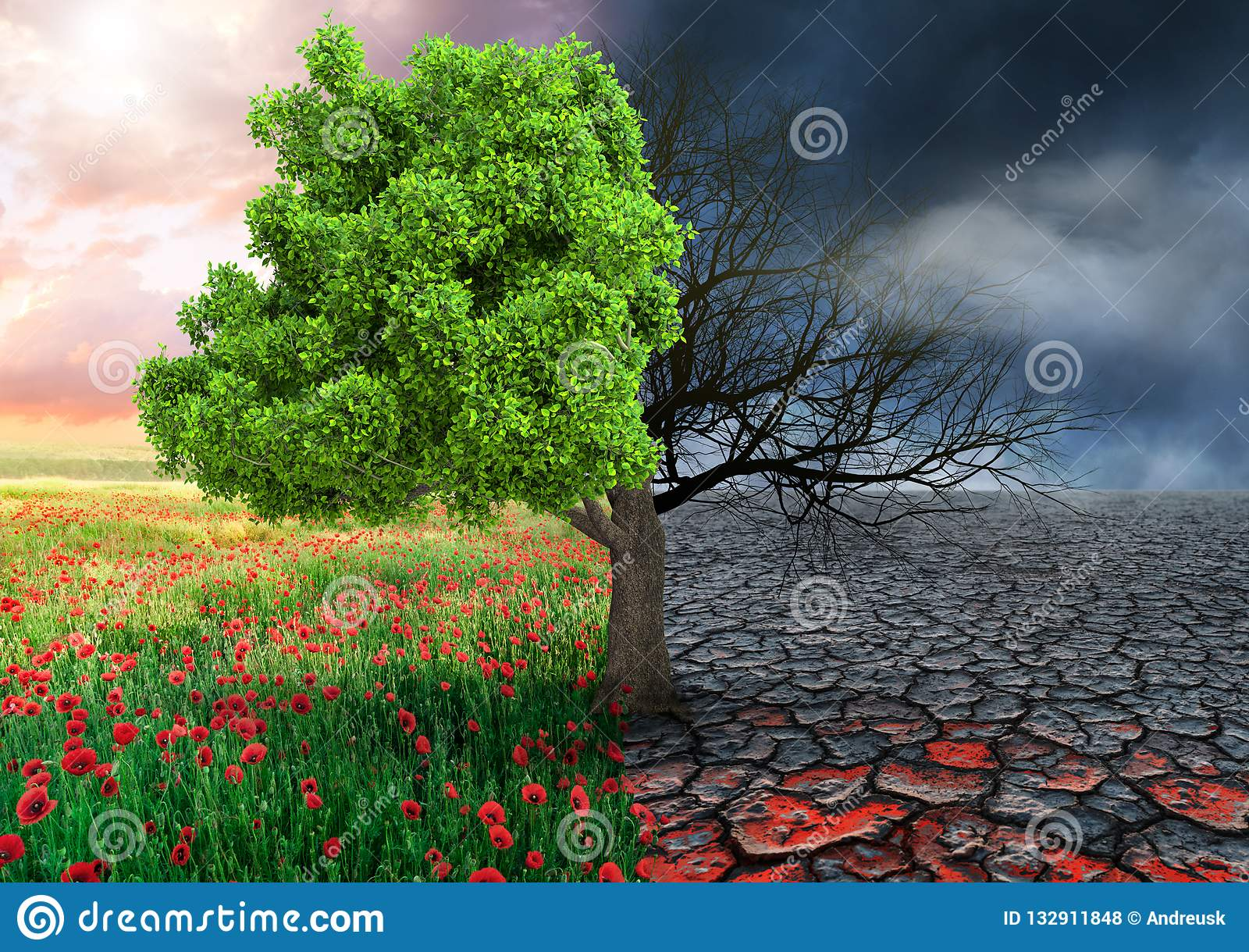 Ecological concept with tree and climate changing landscape