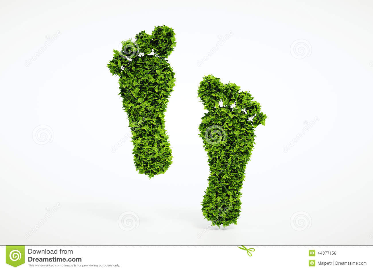 Ecological Footprint S...