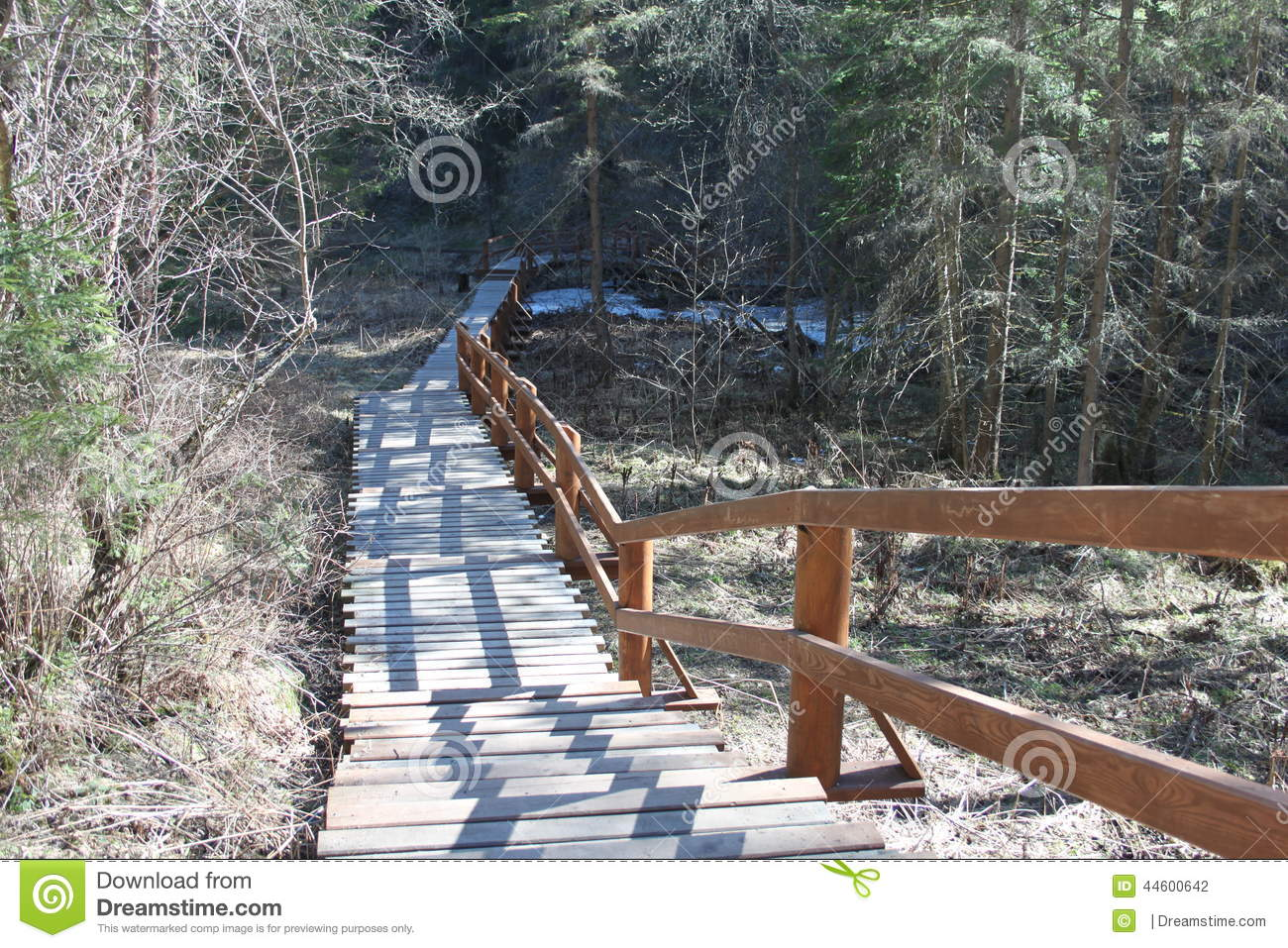 An ecological path for pedestrians in the form of wooden stairs in the coniferous forest in the territory of Krasnoyarskie stolby