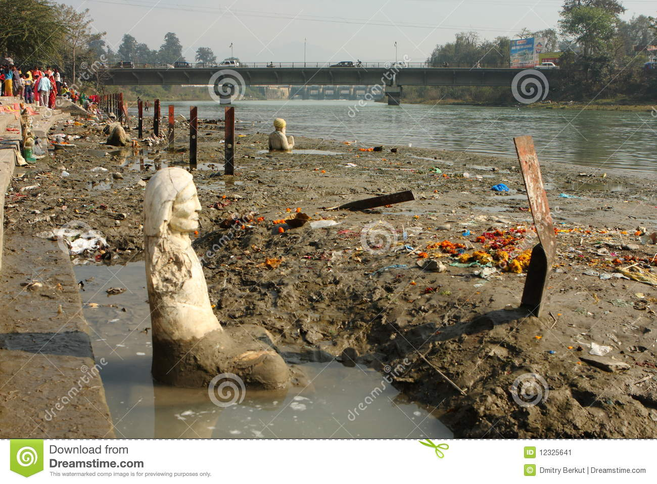 Ecological Problems Stock Photos, Images, & Pictures - 455 Images