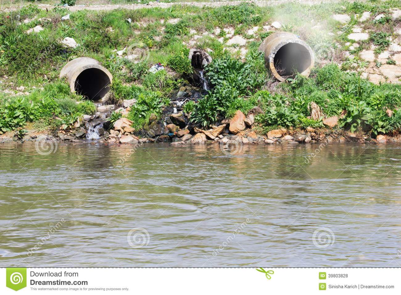 biology pollution Pollution facts: pollution can be described as contamination of air, water and soil by introduction of a contaminant into a natural environment, usually by humans.