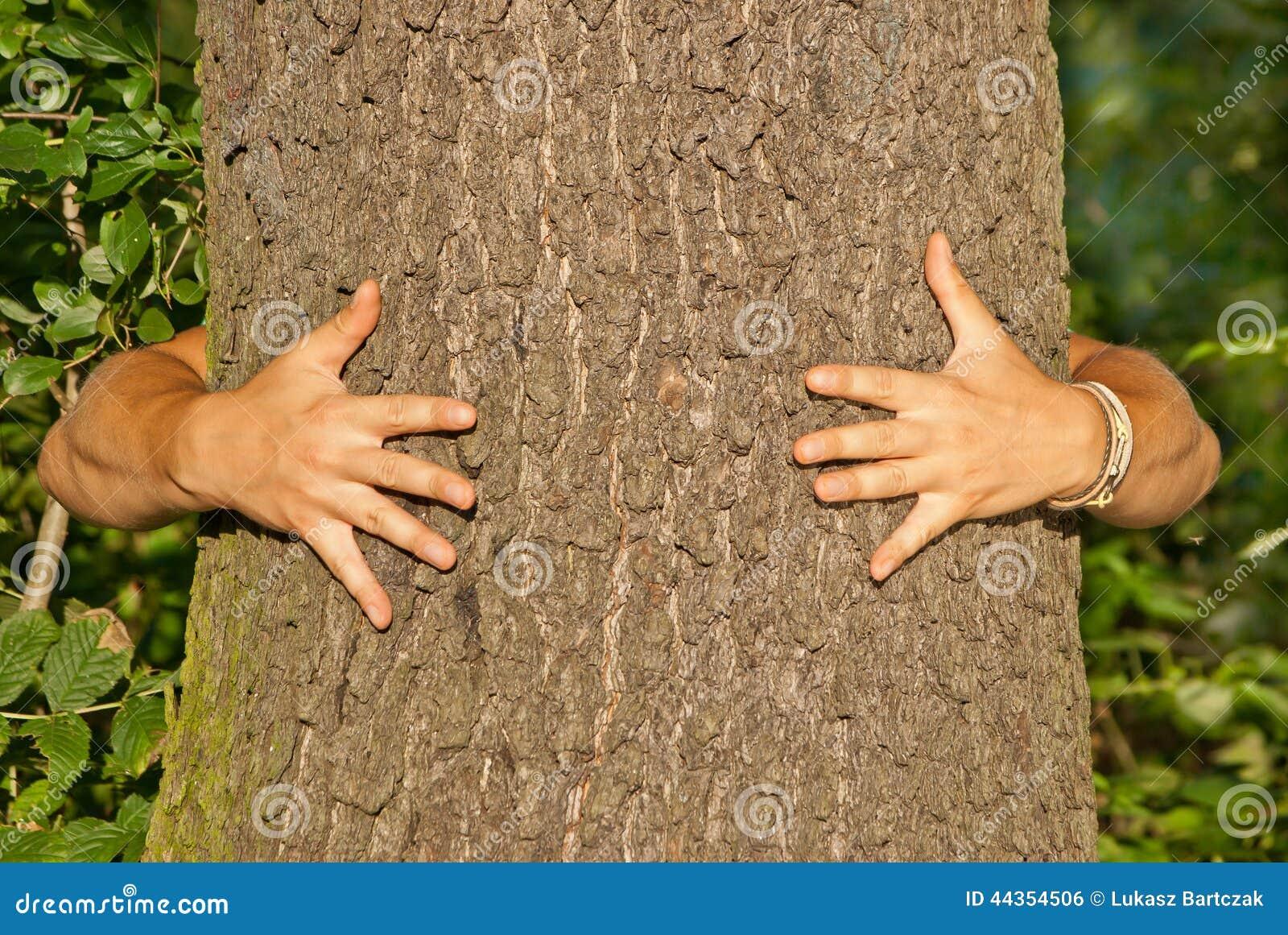 Ecologo del hugger dell albero