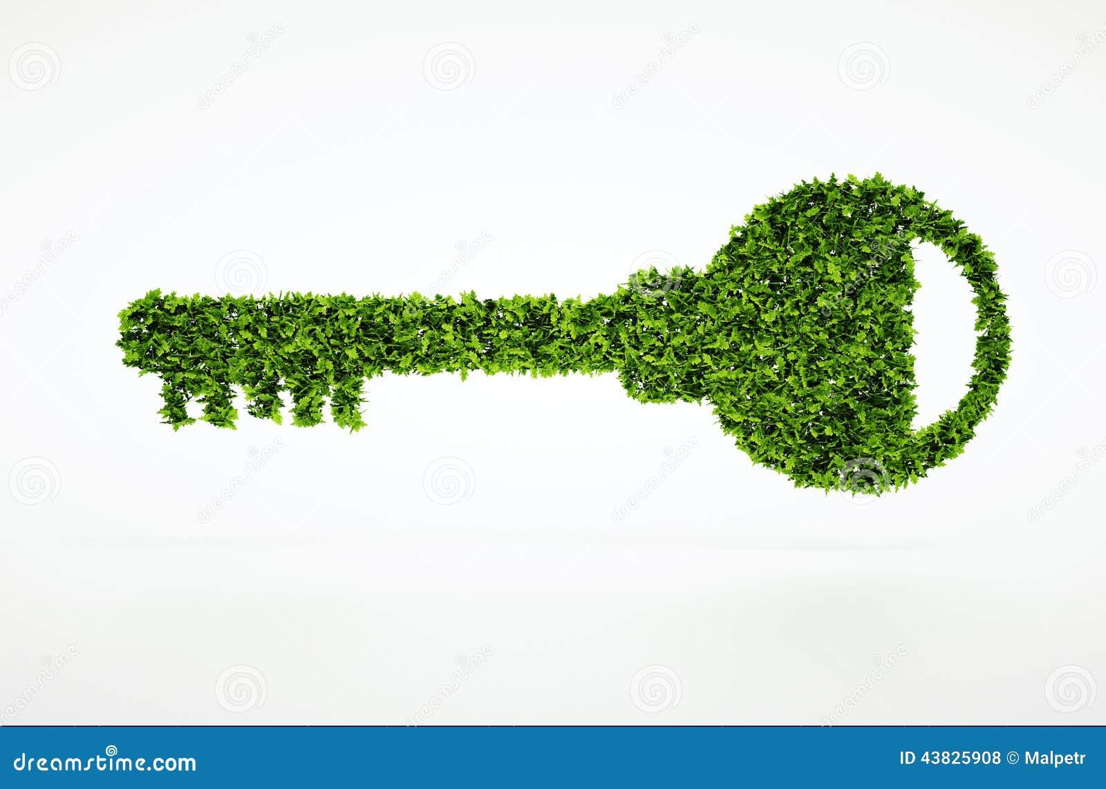 Ecology Natural Key Symbol With White Background Stock Illustration