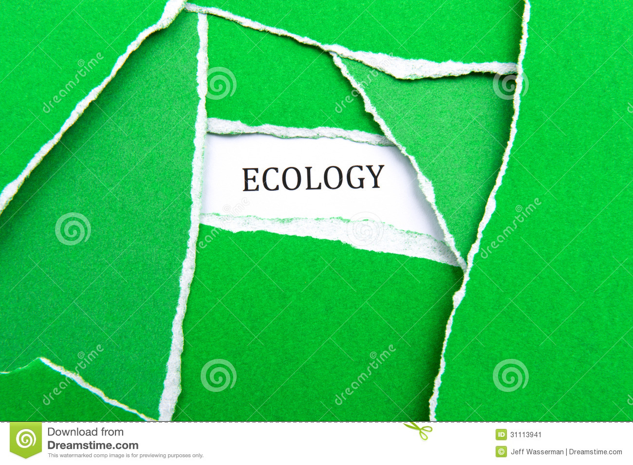 global ecology essay Global ecology and conservation is a peer-reviewed, open-access journal covering all sub-disciplines of ecological and conservation science: from.