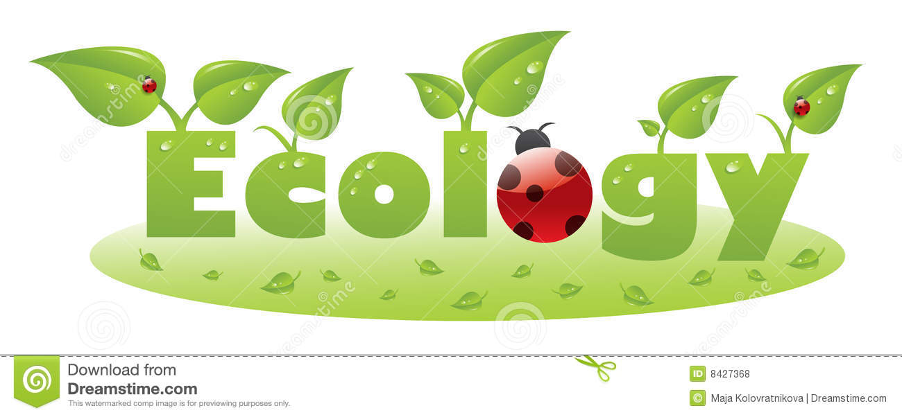 Ecology text caption with ladybug and green leaves