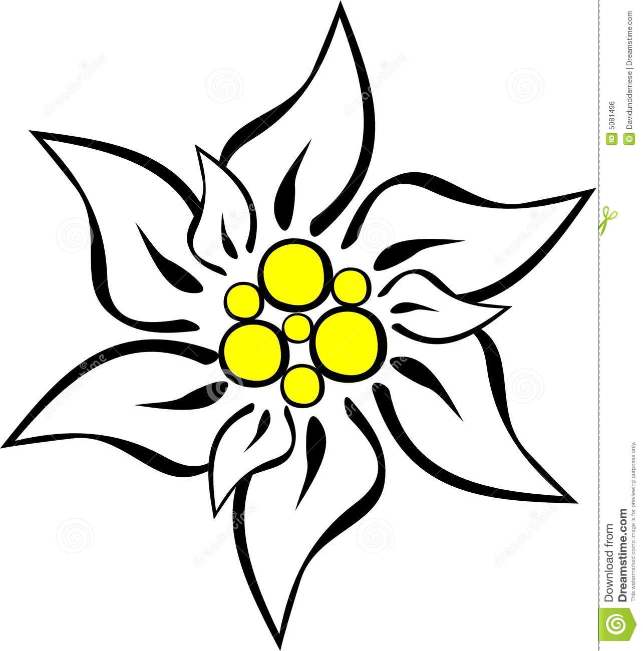Royalty Free Stock Image Edelweiss Image5081496 on thumbs up clip art