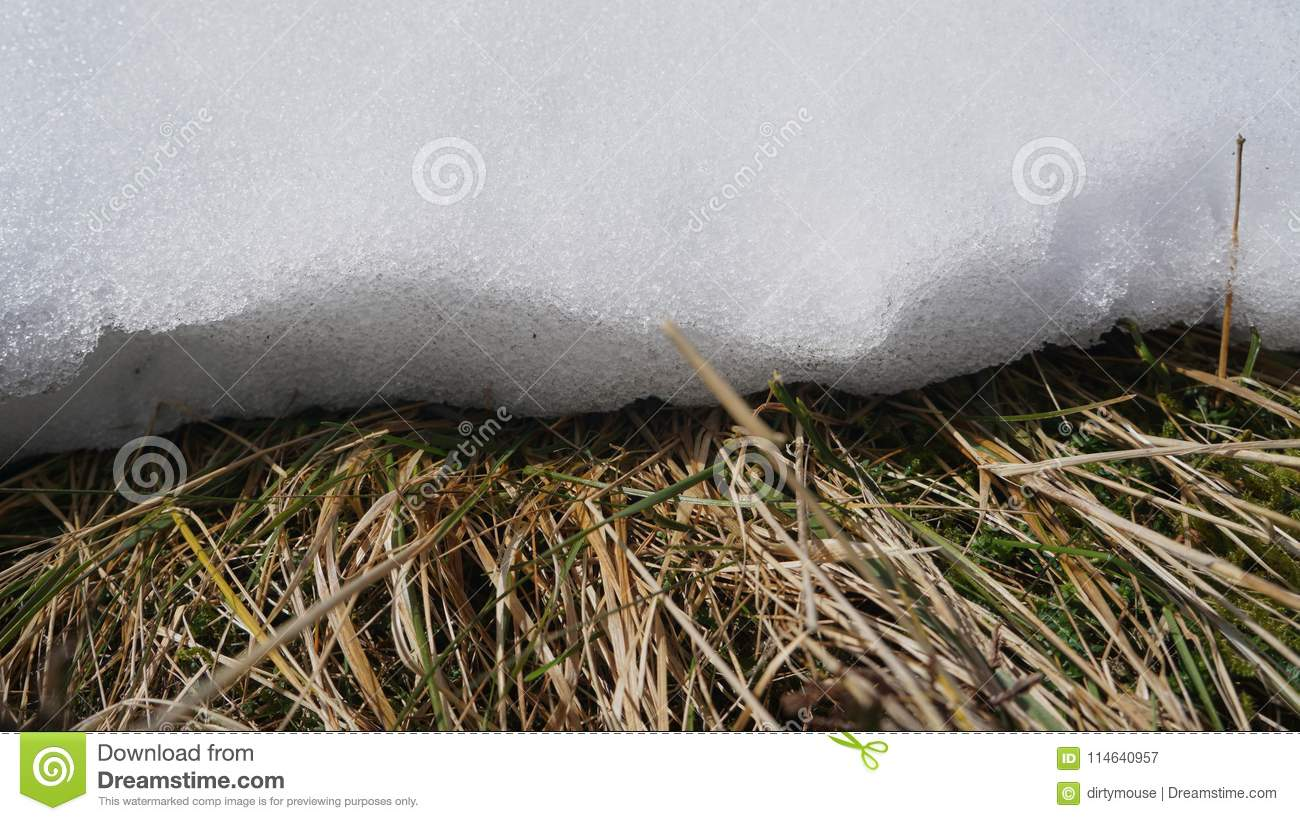 Download Edge of a snow drift stock image. Image of nature, snow - 114640957