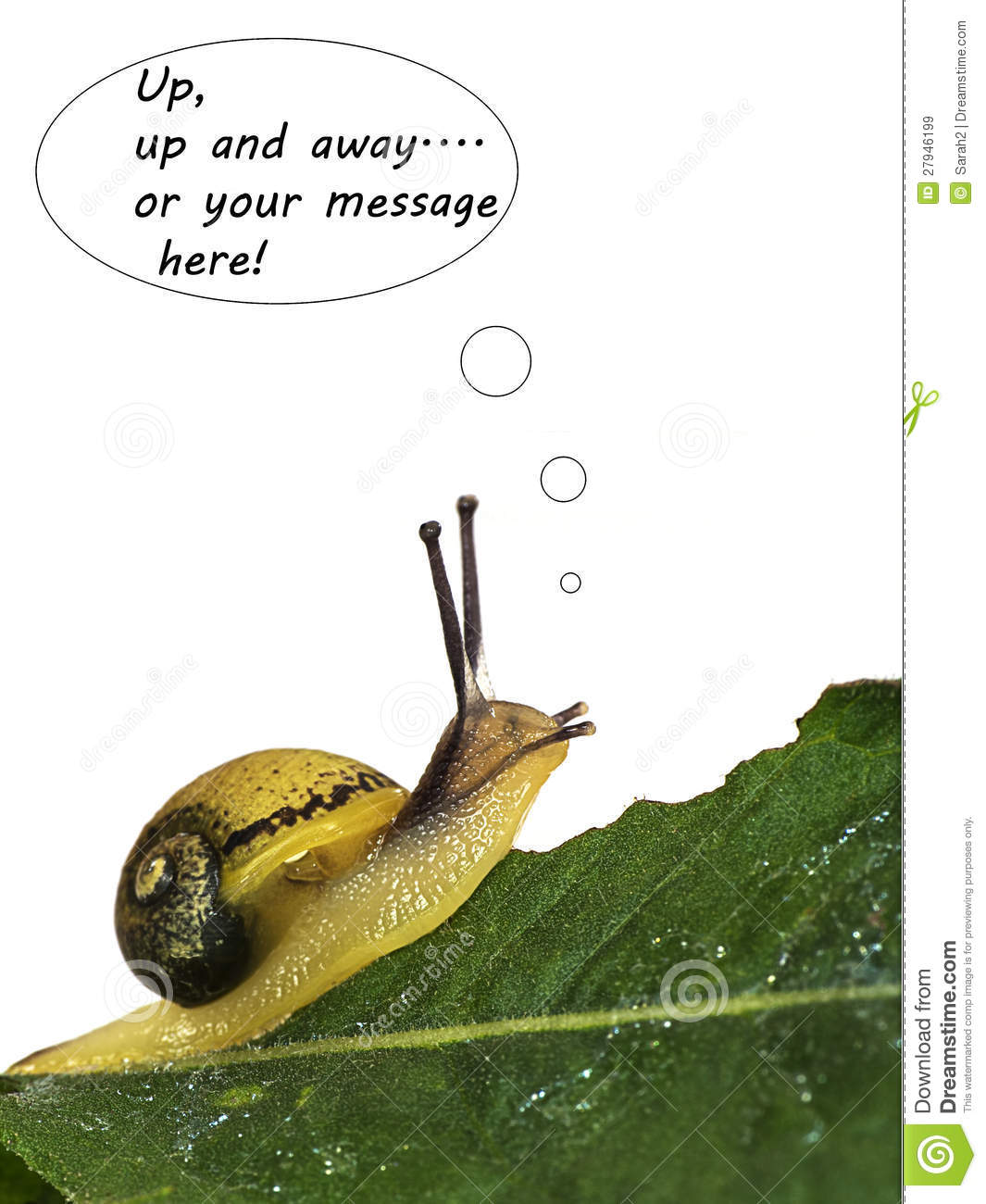 The Edible Snails Escape - Metaphor Royalty Free Stock ...