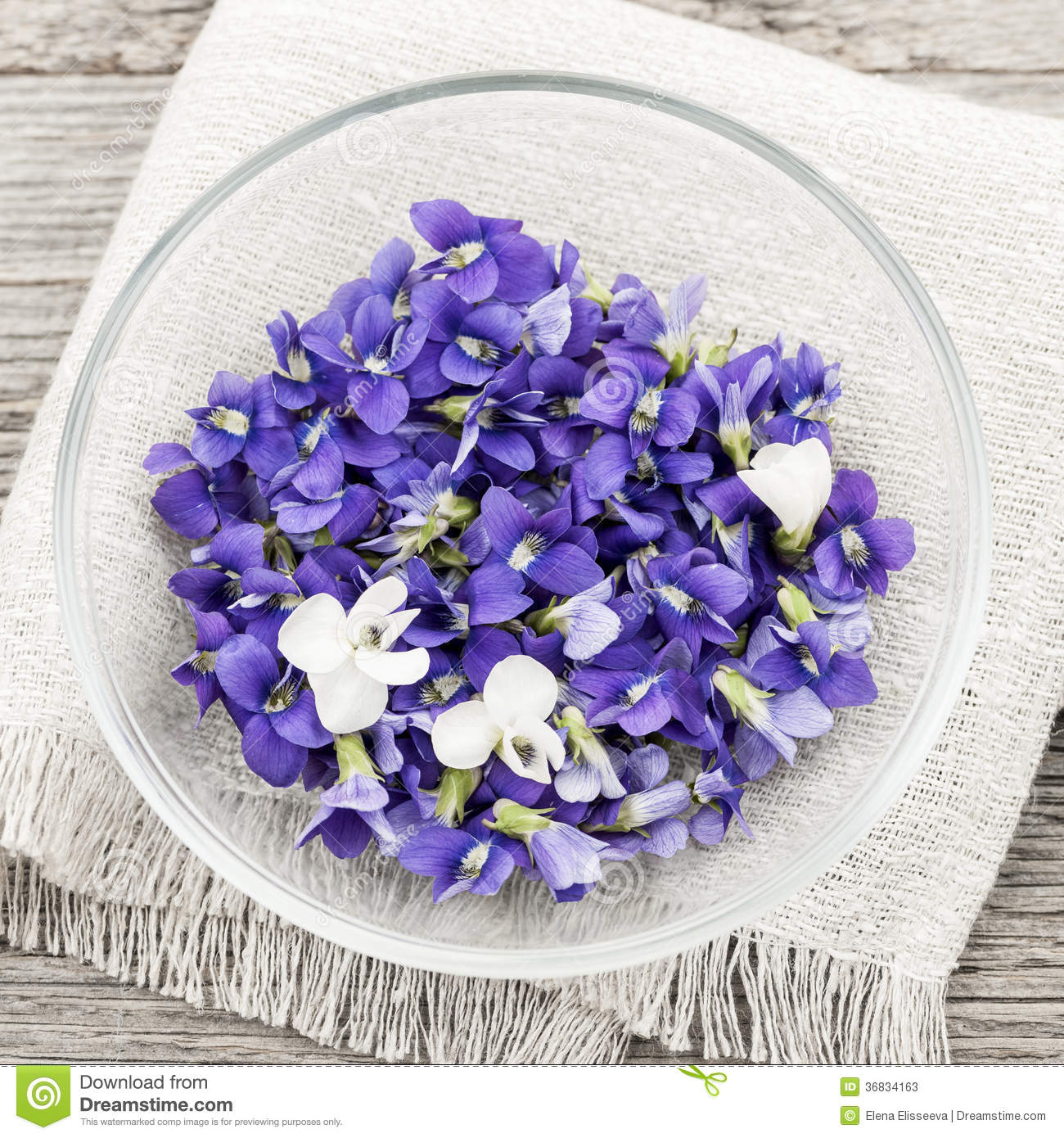 Edible violets in bowl stock image image of forage flowering foraged edible purple and white violet flowers in bowl from above square format mightylinksfo
