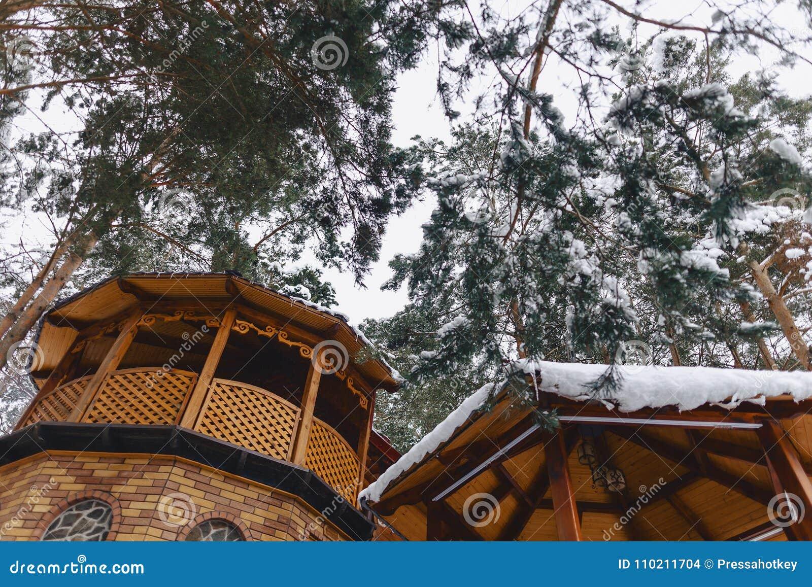 Edificio de madera debajo de árboles de pino nevados