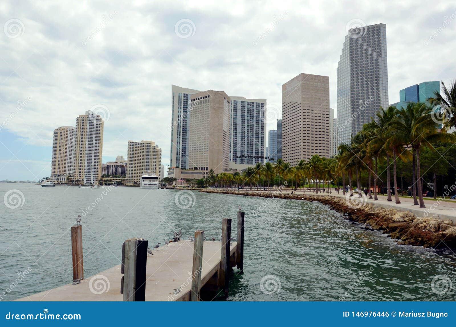 Edificios modernos en Miami, la Florida