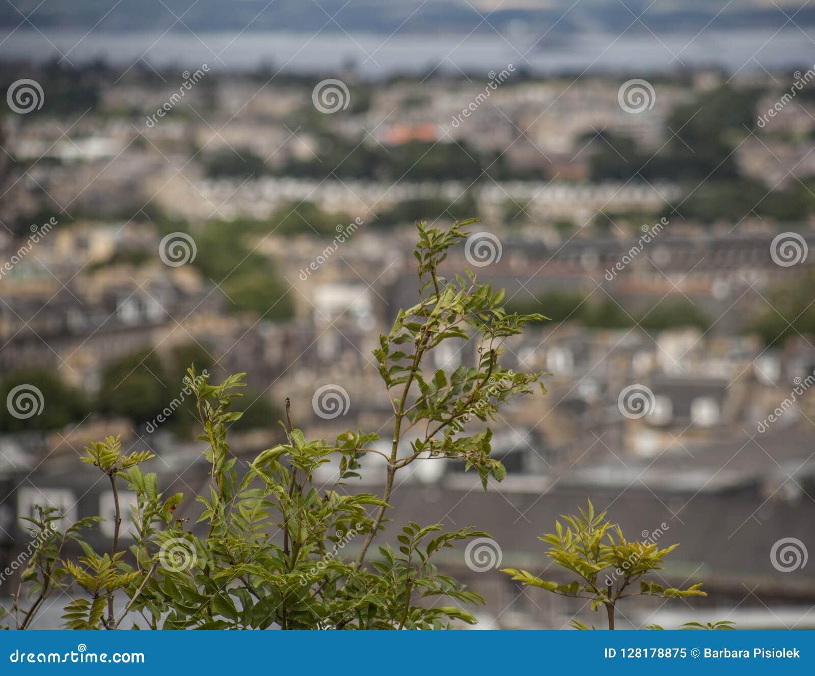 Edinburgh, Schotland - oude huizen op de achtergrond