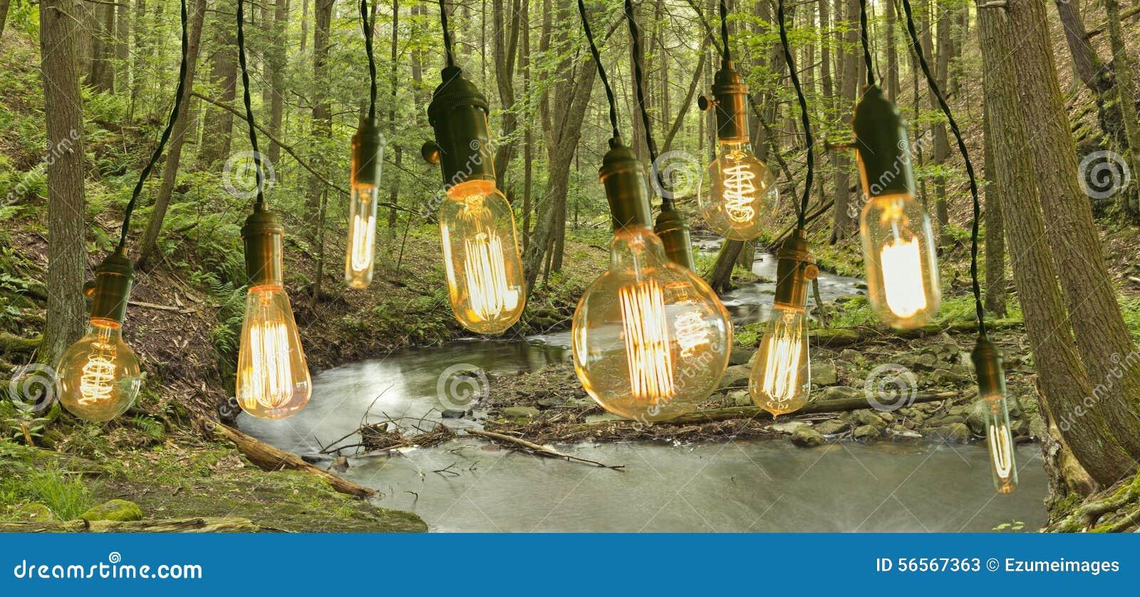 Download Edison Lightbulbs Woods στοκ εικόνα. εικόνα από ρεύμα - 56567363