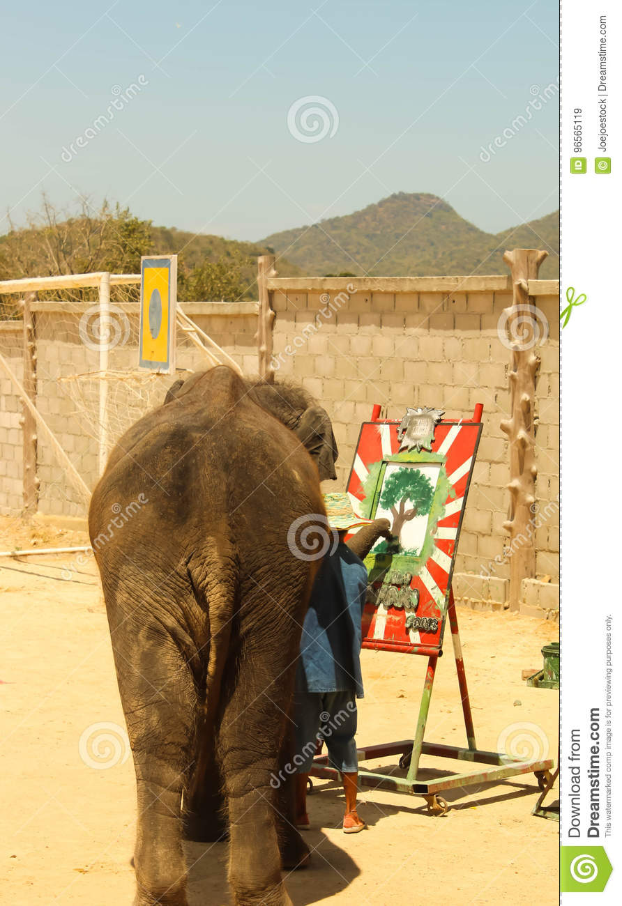 Editorial-Show elephant drawing on the floor in the zoo
