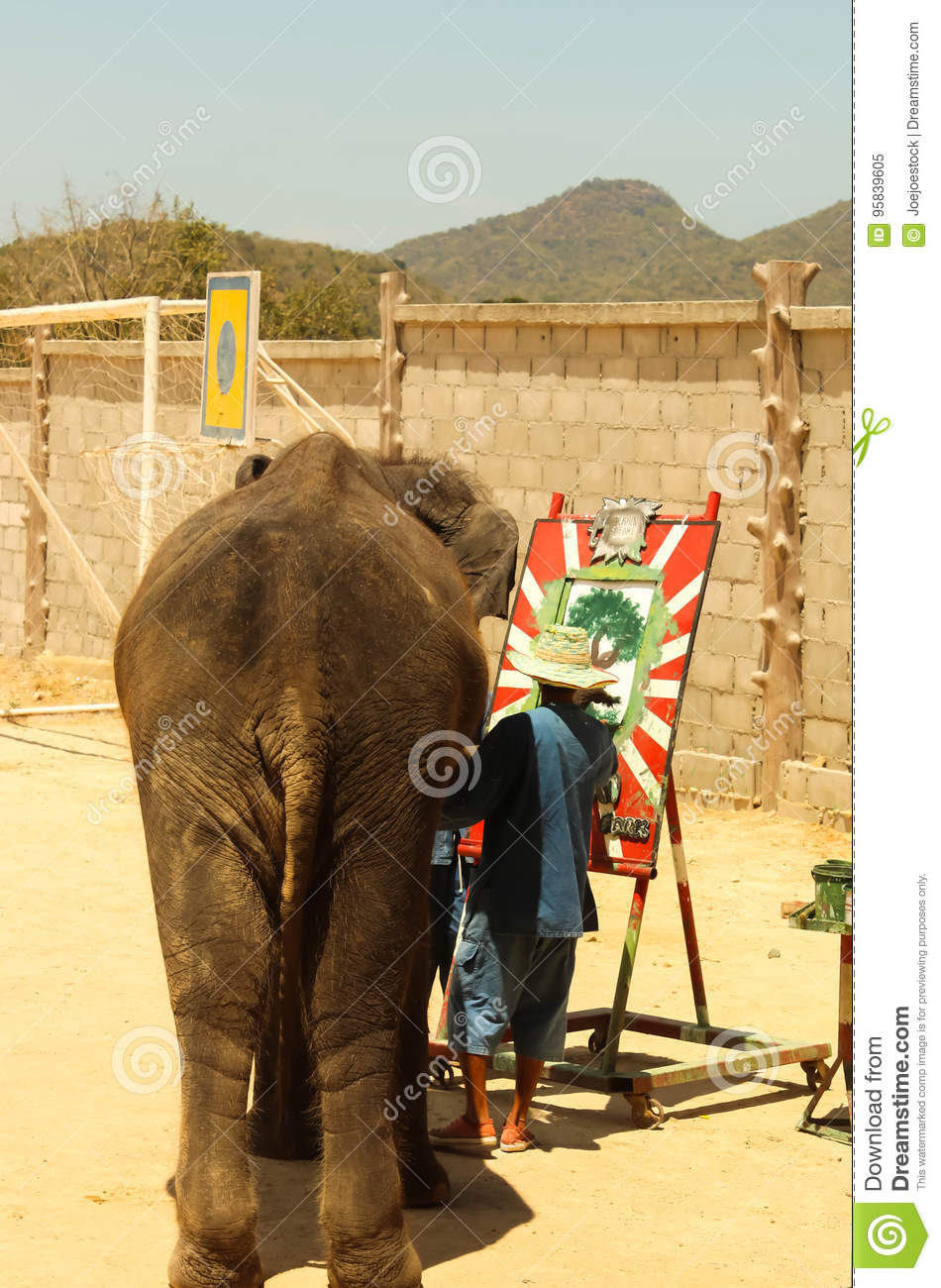 Editorial-Show elephant drawing tree on the floor in the zoo ,T