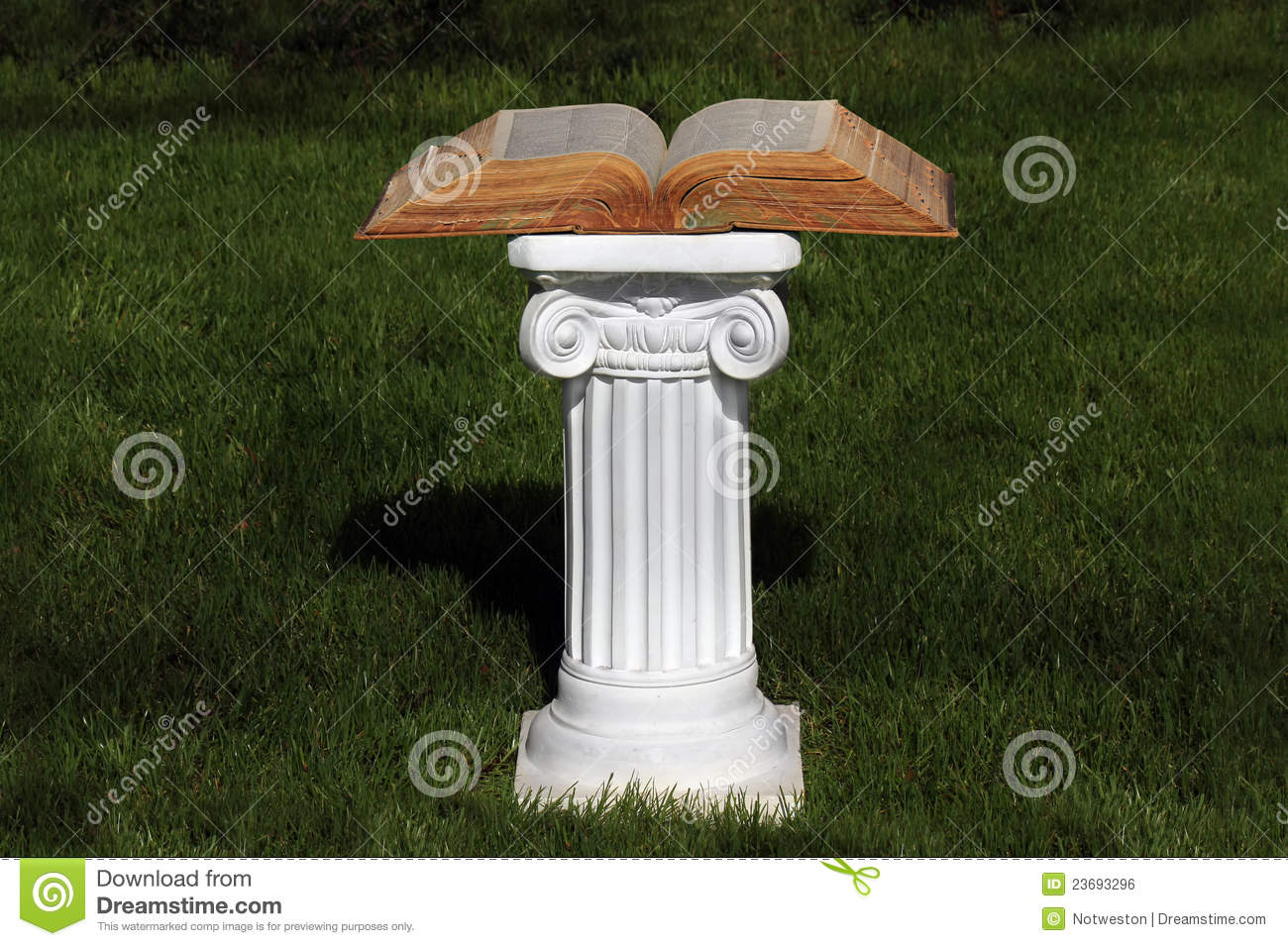 Download Education stock photo. Image of ionic, reading, graduate - 23693296