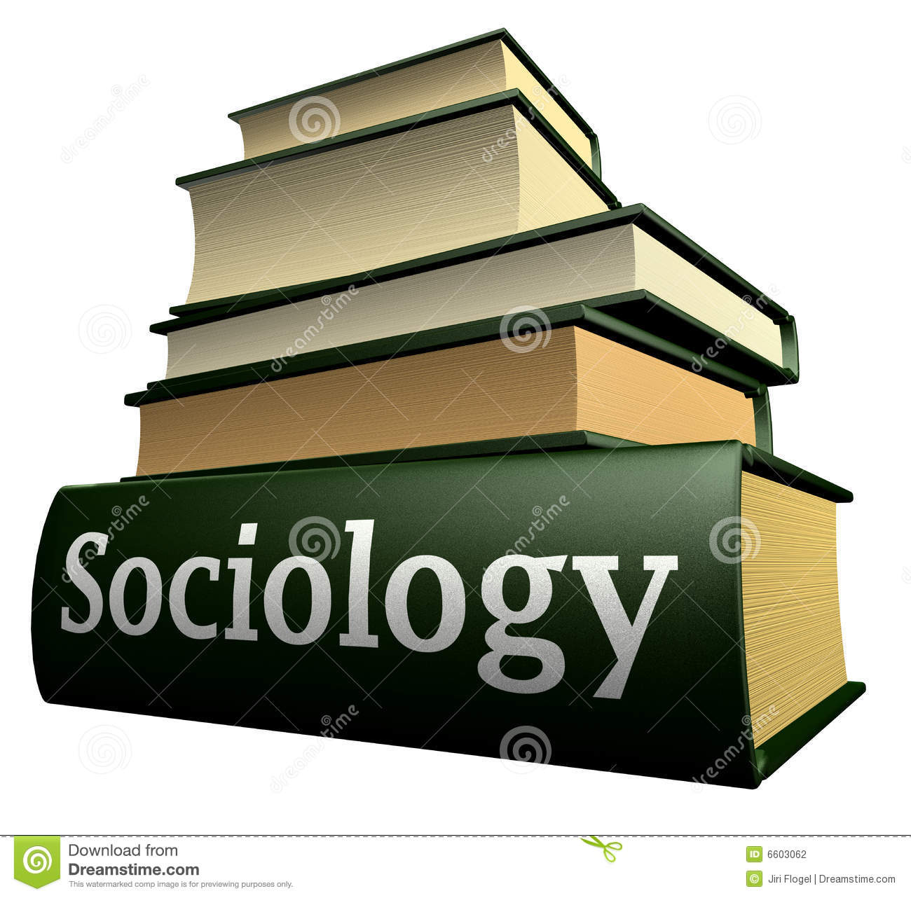 sociology education The curriculum of the sociology and education program emphasizes issues in urban education, including the social organization of urban schools and school systems, and the success or failure of urban schools in meeting the educational needs of the diverse populations they serve.