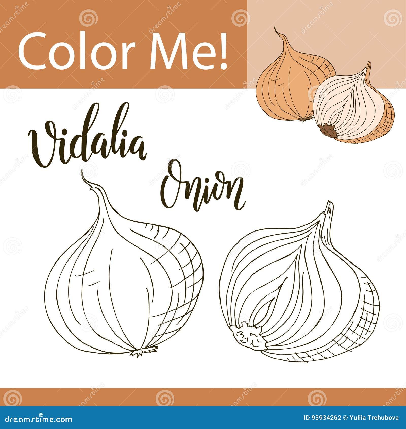 vidalia onion download