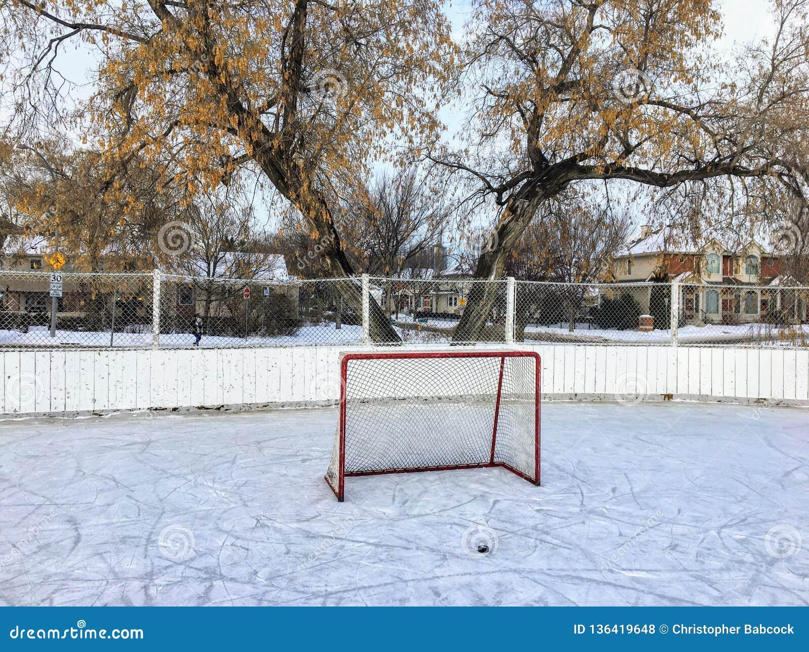 Een aardige mening van een grote openluchtijshockeypiste in Edmonton, Alberta, Canada