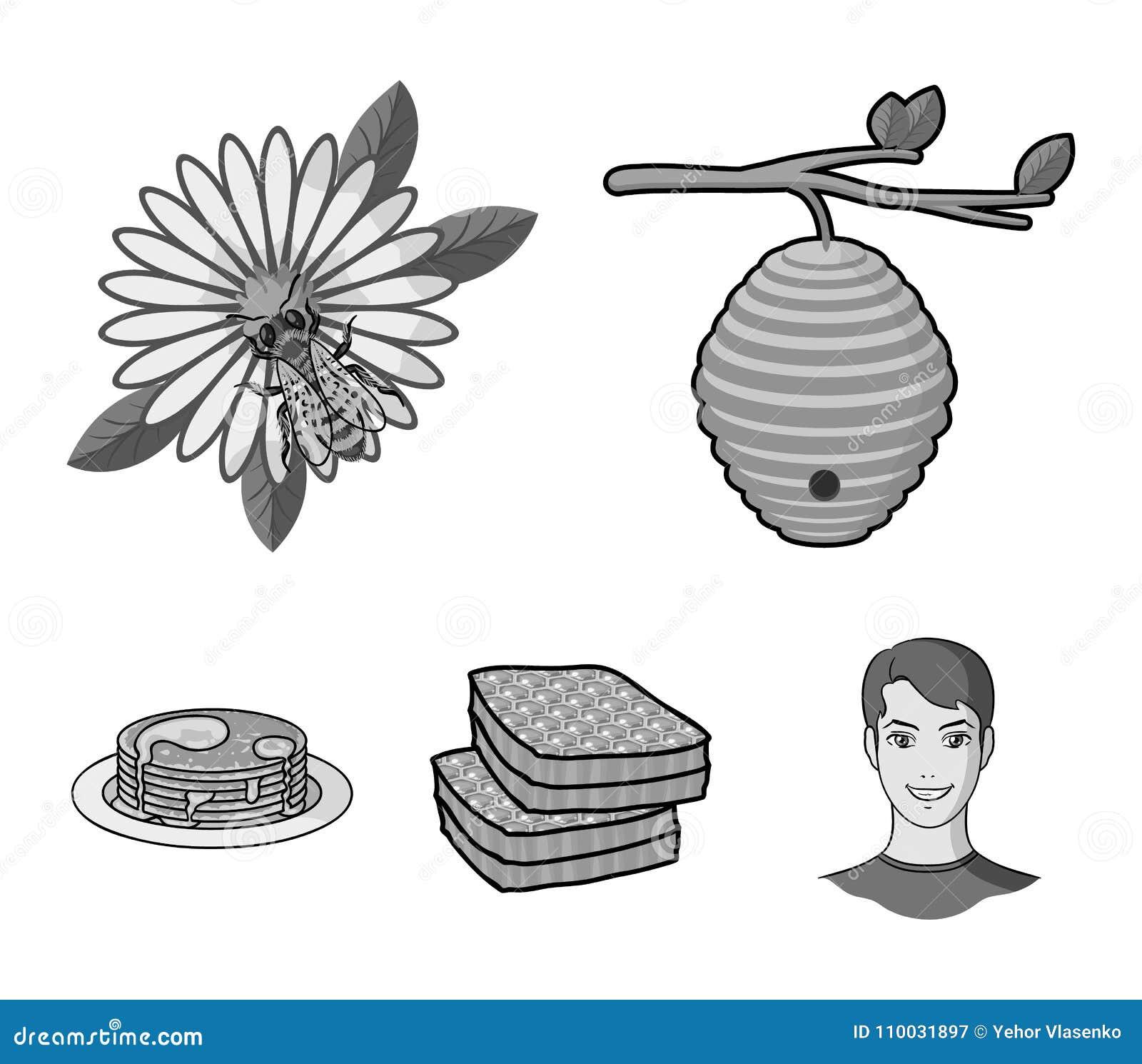 Een bijenkorf op een tak, een bij op een bloem, een honingraat met honing, een honingscake Pictogrammen van de bijenstal de vastg