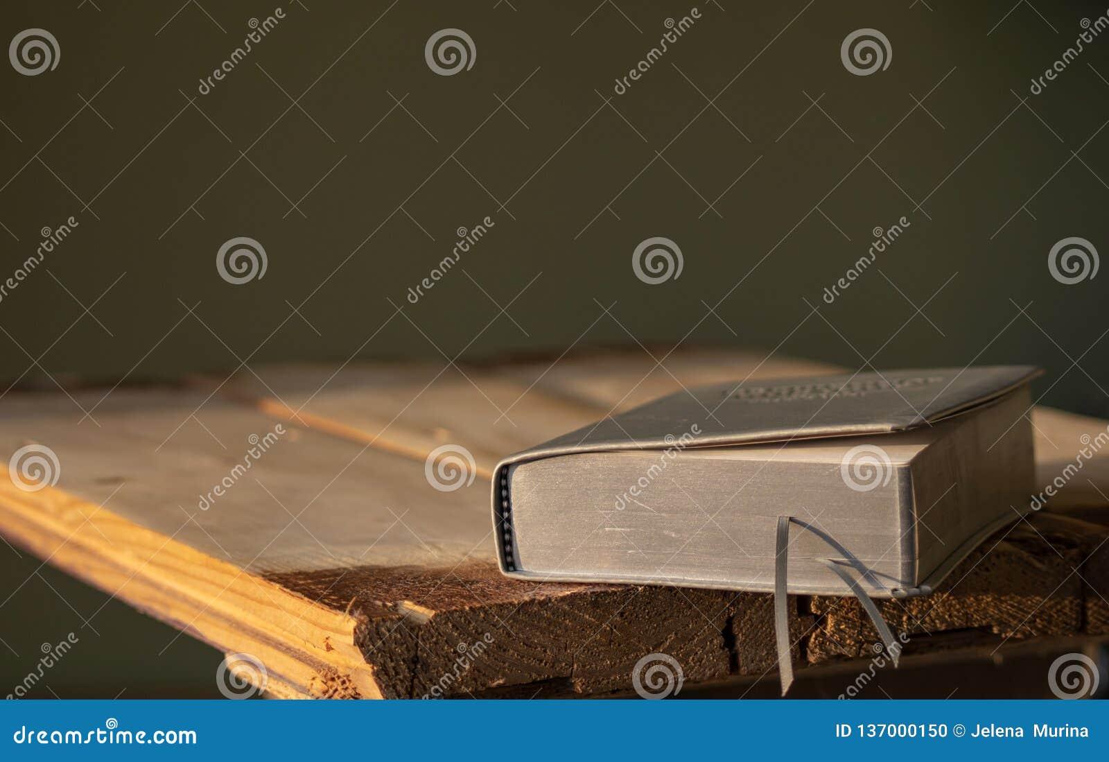 Een boek van het leergebed met zilveren pagina s