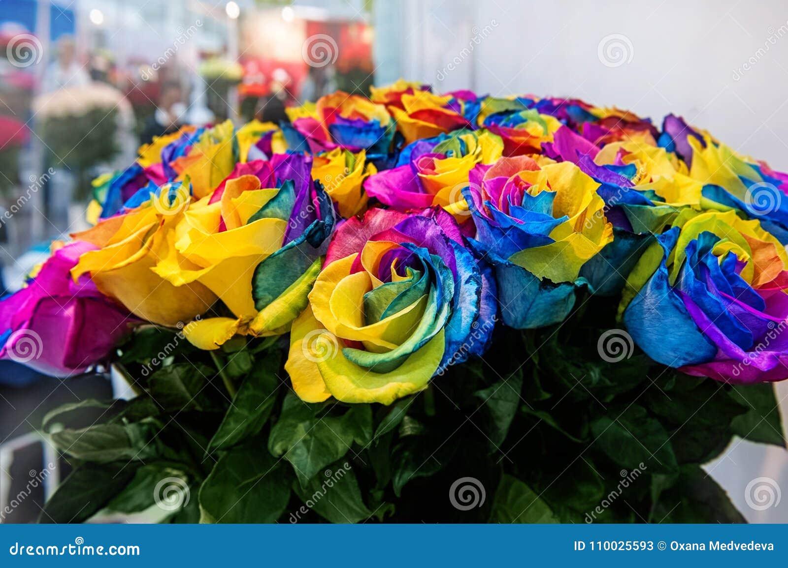 Een boeket van rozen van exotische multikleuren Kameleonbloemen met gekleurde bloemblaadjes bij de randen